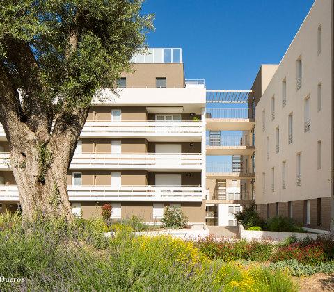 Régalissa – Montpellier