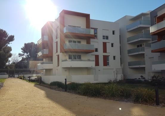Verde Madera – Montpellier