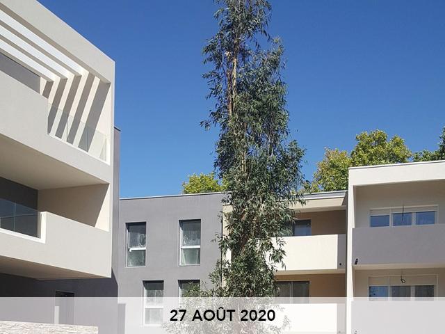 CORIM-coustaude-arbre-1-20-08-27